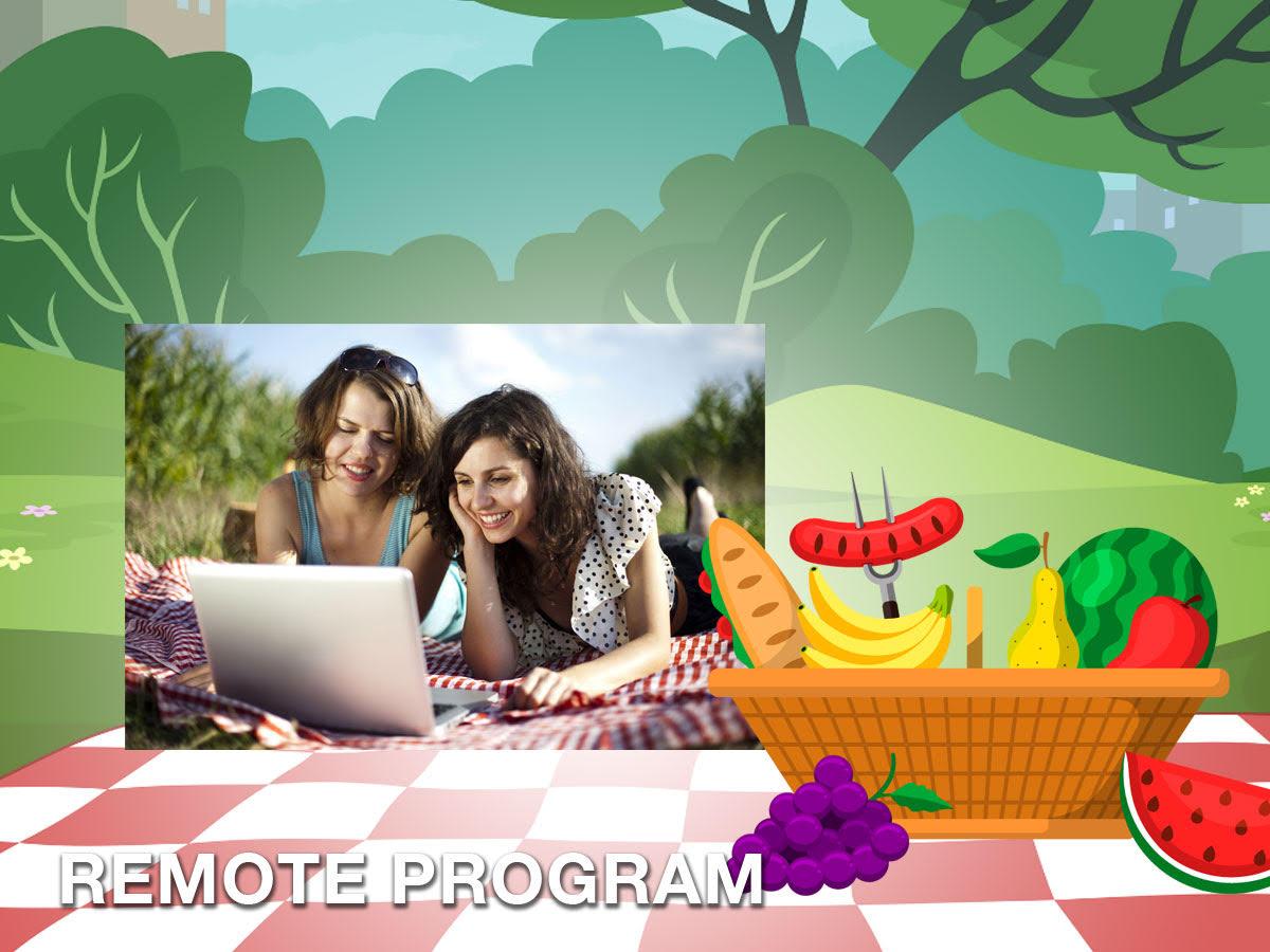 virtual variety picnic